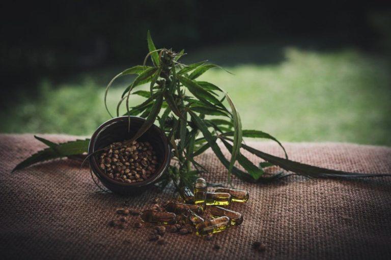 Czy feminizowane nasion marihuany to dobre rozwiązanie?